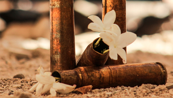 Bullet casings with flowers growing out